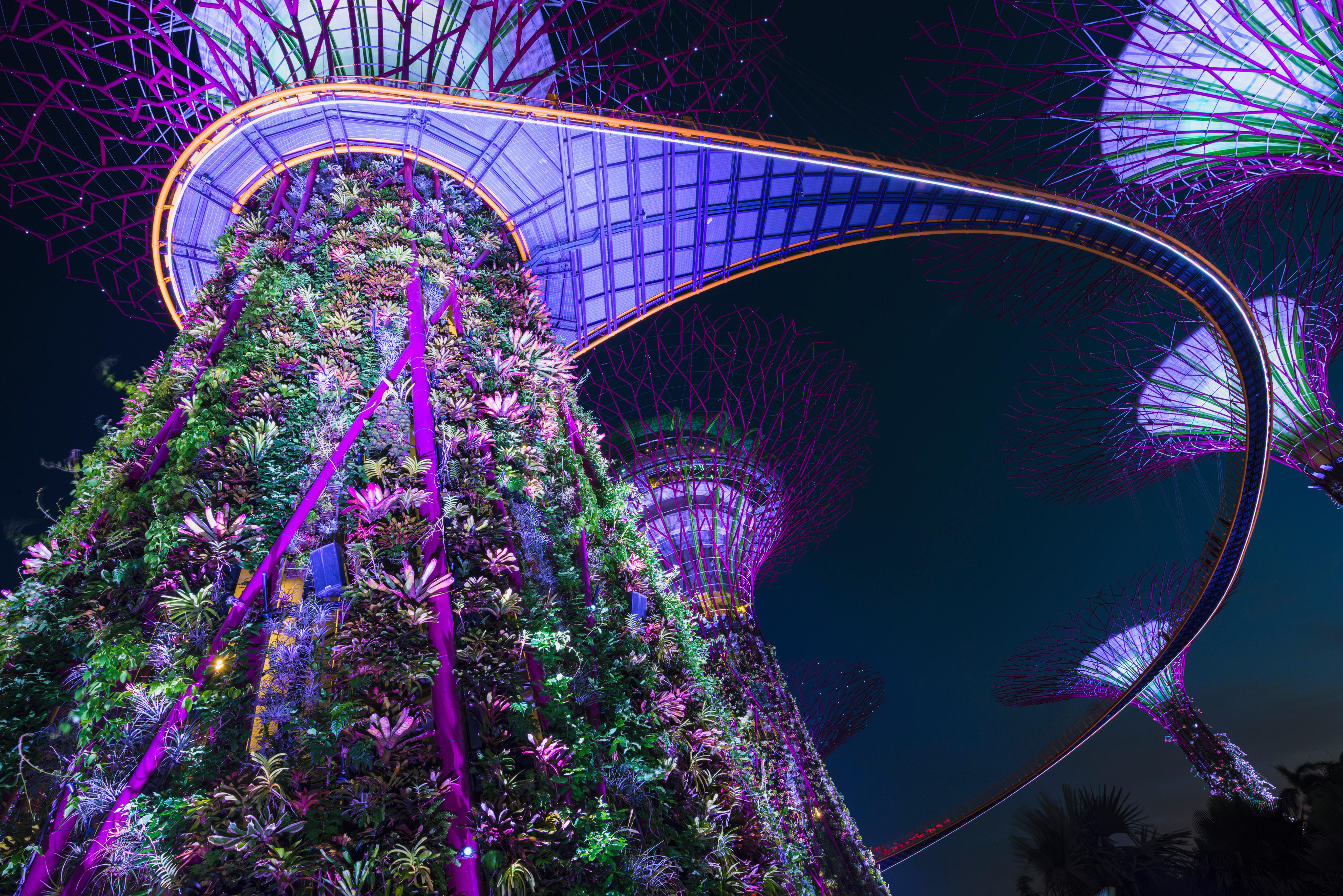 Gardens by the Bay at night, Singapore, Southeast Asia © Robert Harding World Imagery / Alamy